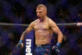 Henry Cejudo Vs TJ Dillashaw Odds & Betting Preview
