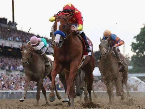 Belmont Stakes Betting Prediction & Odds