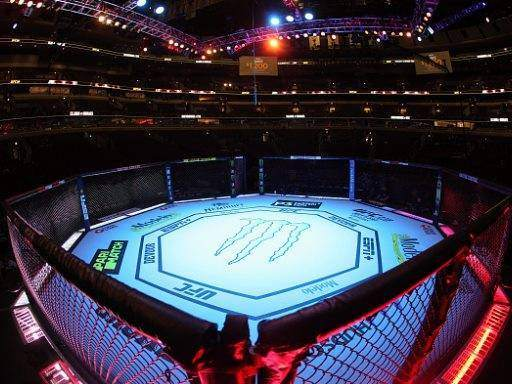 Anthony Pettis vs Carlos Diego Ferreira Predictions & Betting Odds - UFC 246 Preview